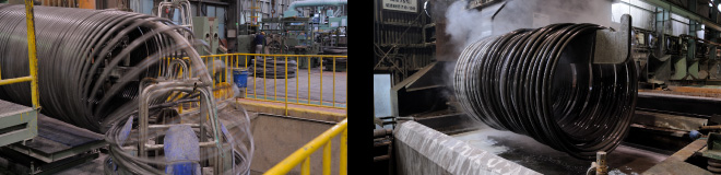 Steel wires for cold heading and cold forging