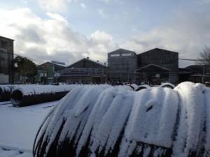 この冬初めての雪が降りました